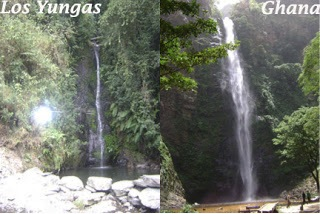 Similarities Yungas and Ghana
