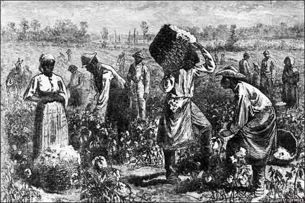 3162451_slave-on-a-cotton
